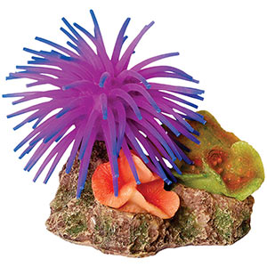 AQ 6 pk Corals with Anemone Ass.10x6.5x9cm AQ28651