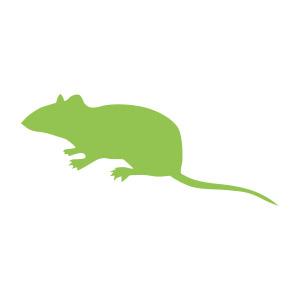 Frozen Mice Medium 16-22g, Barcode 25-pack