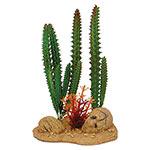 AQ Cactus with Rock Base 9 x 6.5 x 14cm 81042
