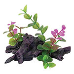 AQ Driftwood with Plant 11 x 6 x 9cm AQ61244