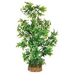 AQ Plant wth A/stone Base 8.3cm(base)x40cm AQ19026