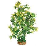 AQ Plant wth A/stone Base 8.3cm(base)x43cm AQ19030