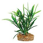 AQ Plant with Sandstone 4.5cm(base)x9.5cm AQ19004