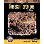ECO Russian Tortoises in Captivity