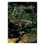 Chimaira: Lissotriton vulgaris (German)