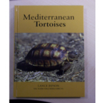 *GB100. Meditteranean Tortoises (Jepson)
