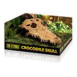 ET Crocodile Skull, PT2856
