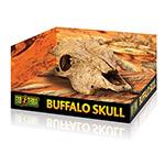 ET Buffalo Skull, PT2857