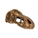 ET T-Rex Skull Small, PT2860