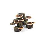 LR Deco Wood Mushroom Trunk DW-MT