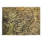 *PR Terrarium Background 57 x 43cm DPB235