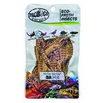 ProBugs 10 PACK Eco Fresh Superworm, 20g
