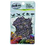 ProBugs 10 PACK Eco Fresh B/Soldier Fly Larvae 20g