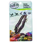 ProBugs 10 PACK Eco Fresh Centipede, 2pcs