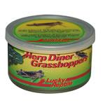LR Herp Diner Grasshoppers Med. HDC-21