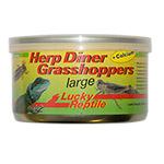 LR Herp Diner Grasshoppers Lg 35g HDC-22