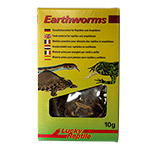 LR Earthworms 10g E-20