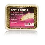 PR Beetle Grub (Type B)