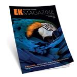 EK Magazine BUNDLE OF 10 Dec-2020 (Issue 2)