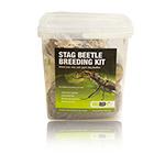 PR Stag Beetle Rearing Kit