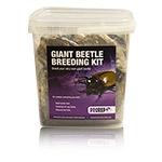 PR Chafer Beetle Rearing Kit