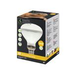 RS D3 UV Basking Lamp - 100w