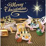 PR Christmas Cards (Pk10) L.Geckos Kings