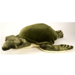 *WR Floppies Grn Sea Turtle 76cm Soft To