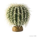 ET Barrel Cactus Medium, PT-2985
