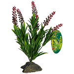 LR Borneo Grass, red spikes 30cm, IF-62