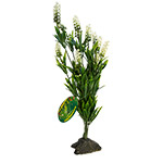 LR Borneo Grass, white spikes 40cm IF-63