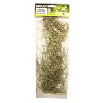 PR Airplant PREMIUM Usenoides (Spanish Moss)
