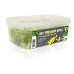 PR Live Plant: Premium Sphagnum Moss,1000ml