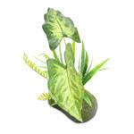 PR Artificial Philodendron Gigas Plant, 35cm
