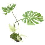 PR Artificial Philodendron Monstera Plant, 45cm
