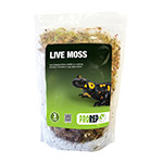 PR Live Moss, Large Bag (approx 3L)