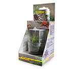 LR Critter Box (WITH INDIAN MANTID)  CB-1