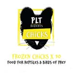 PLT Frozen Chicks 10 pack