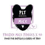 PLT Frozen Mice Pinkies 1g+ 10 Pack