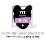 PLT Frozen Mice Lge Pinkies 2g+ 25 Pack