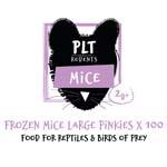 PLT Frozen Mice Lge Pinkies 2g+ 100 Pack